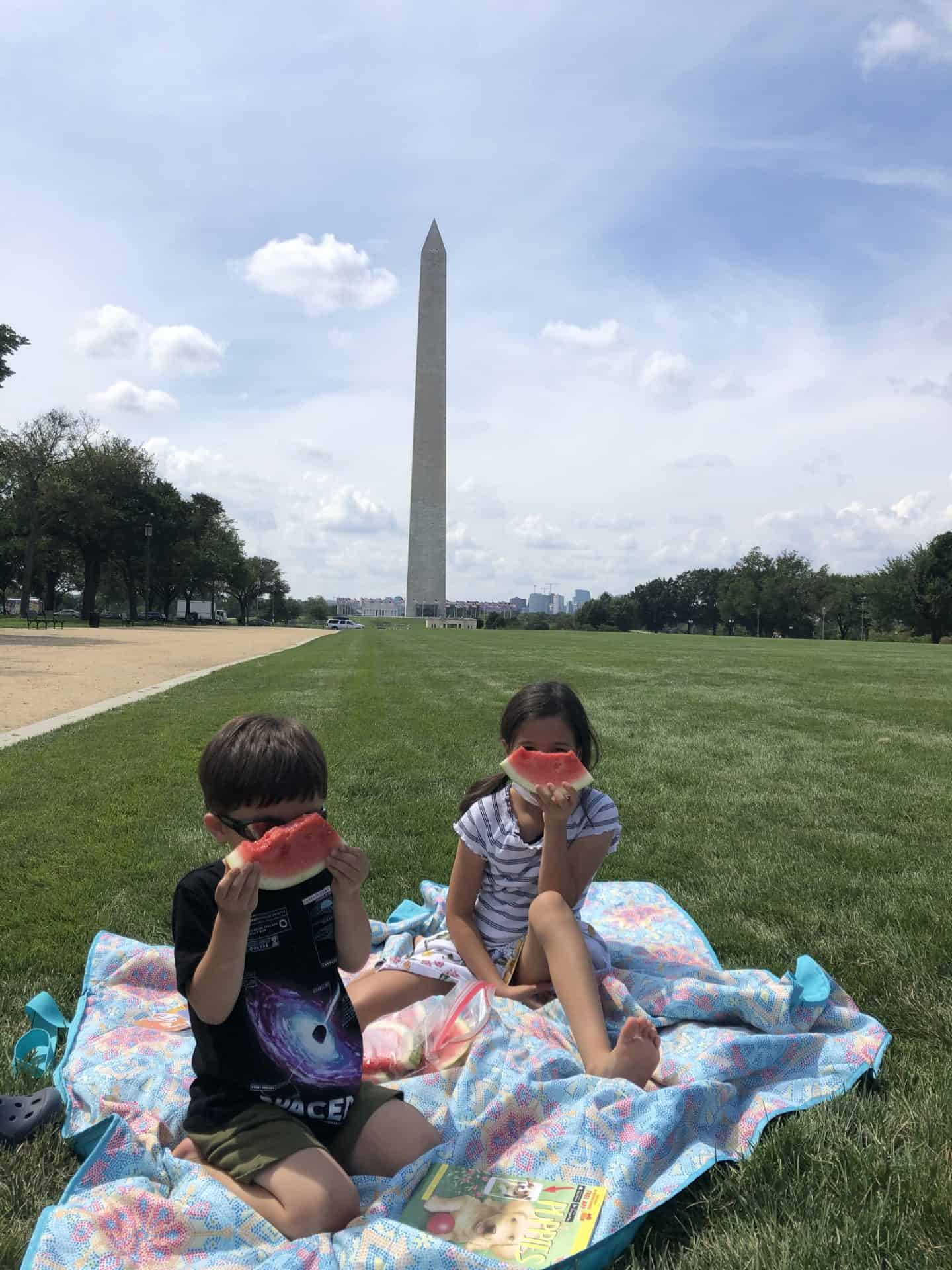 Kid Friendly DC Restaurants can sometimes mean picnic on the mall!