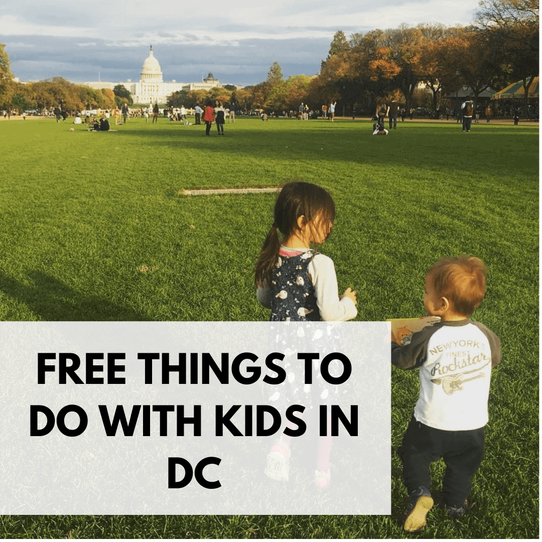 This image has an empty alt attribute; its file name is Free-Things-to-Do-with-Kids-in-DC.png