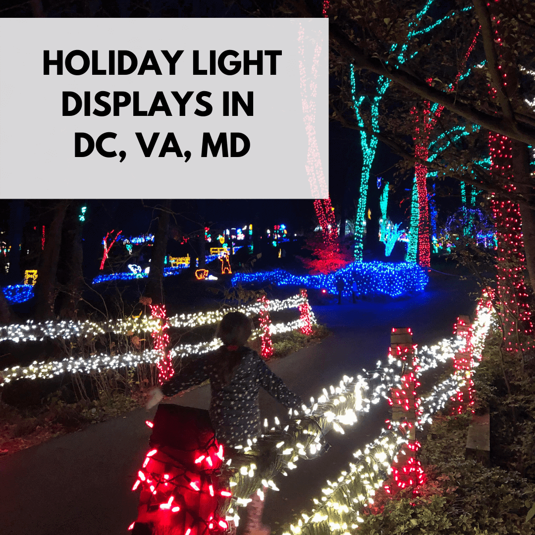 Holiday Light Displays in DC