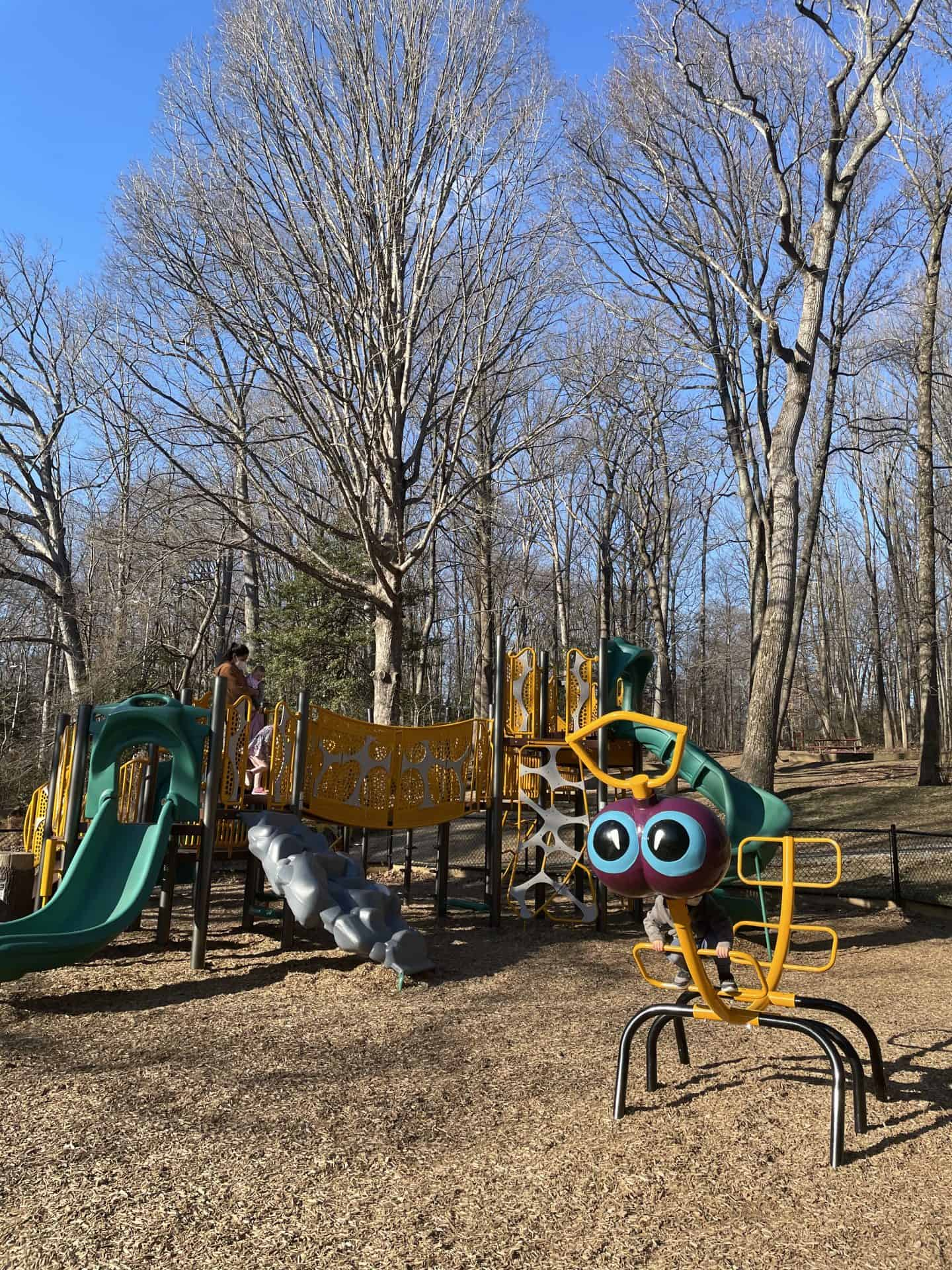 Butterfly Themed Playground in Annandale VA