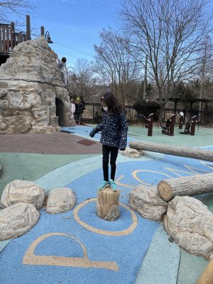 Palisades Potomac Themed playgrounds in dc