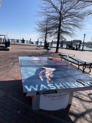 Ping Pong on Annapolis Dock great for Kids